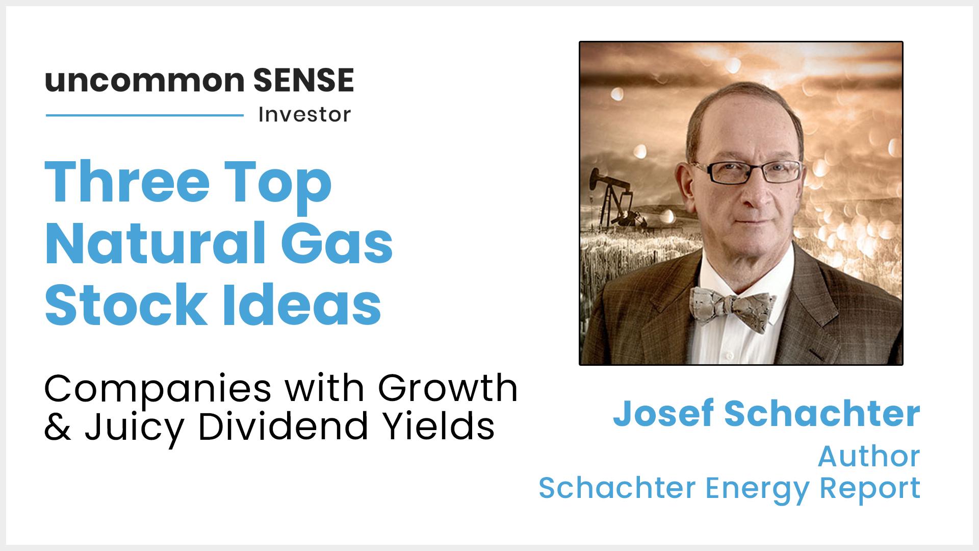 Uncommon Sense Investor - Josef Schachter's Three Top Ideas